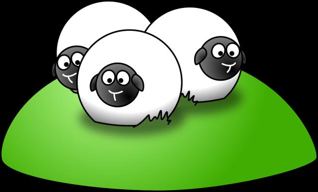 videos-para-bebes-ovejas